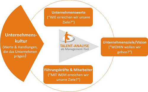Talent Analyse als Management Tool